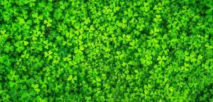 Be Safe and Enjoy a Green St. Patrick's Day